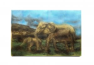Gravure sur bois – Les éléphants